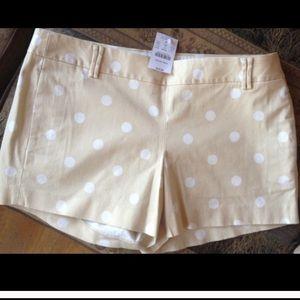 NWT J crew polka dot shorts 6